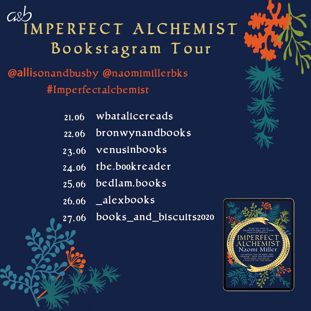 Imperfect Alchemist bookstagram Instagram Graphic (1)